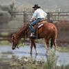 SHOPPING LIST TO BULD A NEW... - last post by ranchhand_